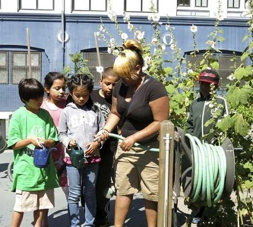 6.28.13-RosaParks-Mrs.Meyers-Compost_IMG_1001