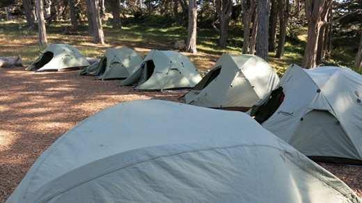 6.17.14-BEETS-Camping_IMG_6955