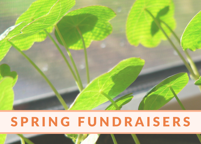 Copy of Spring Fundraisers (1)