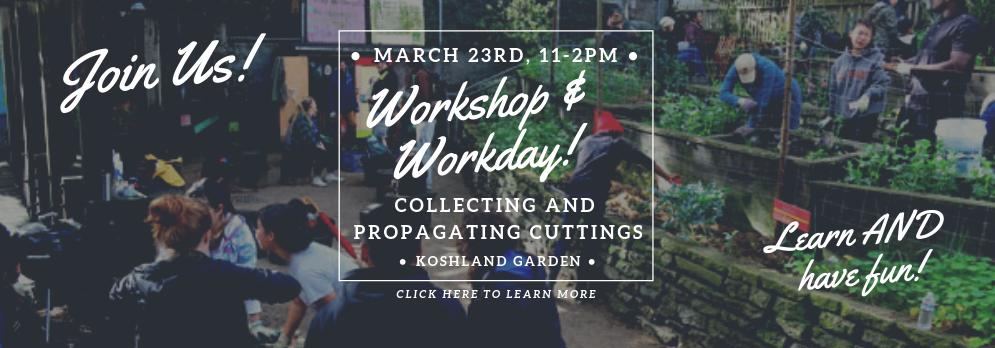 March 23 2019 workday slider