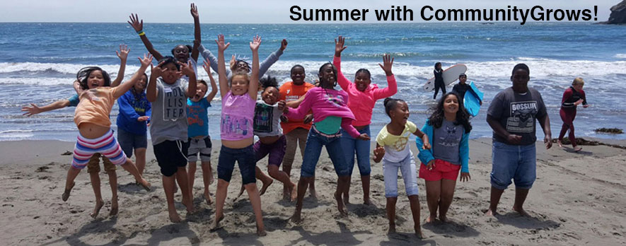 Muir-Beach-Summer-2016-SFW