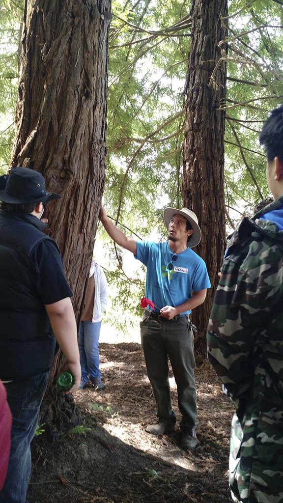 6.16.15-BEETS-Camping_Presidio_-MT_IMG_20150616_150513401