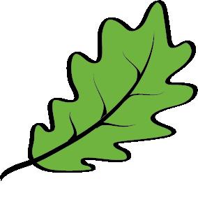 NatureNet-Logo-FNL-LeafOnly