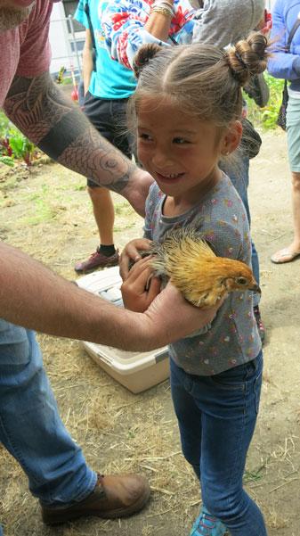 9-10-16-rp-wkday-chickens_img_7522