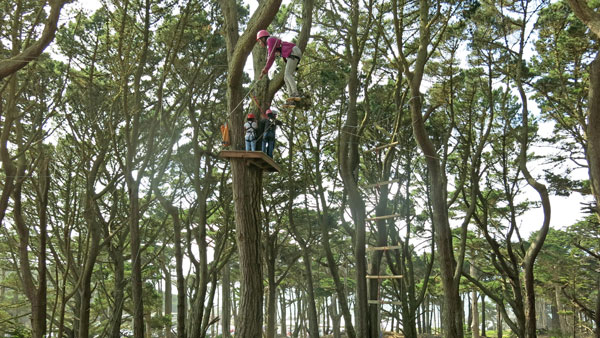 10-22-16-beets-ropescourse_img_8076