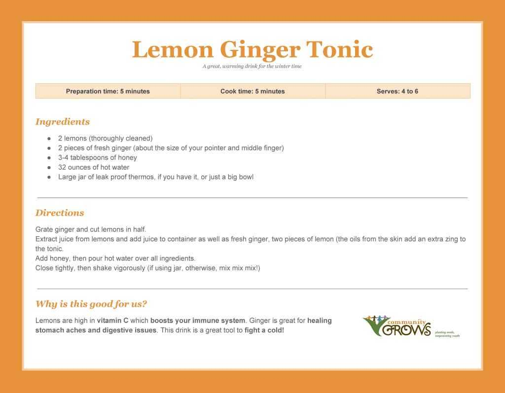 lemongingertonicrecipecard