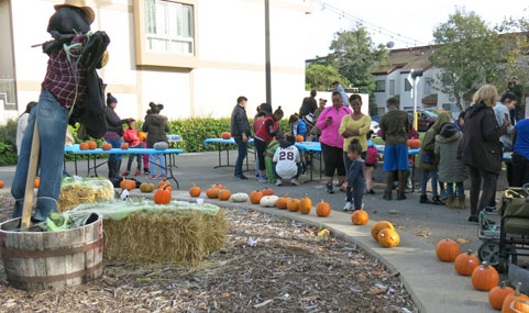 10.20.17-Pumpkins-at-Buchanan-Mall_IMG_2168