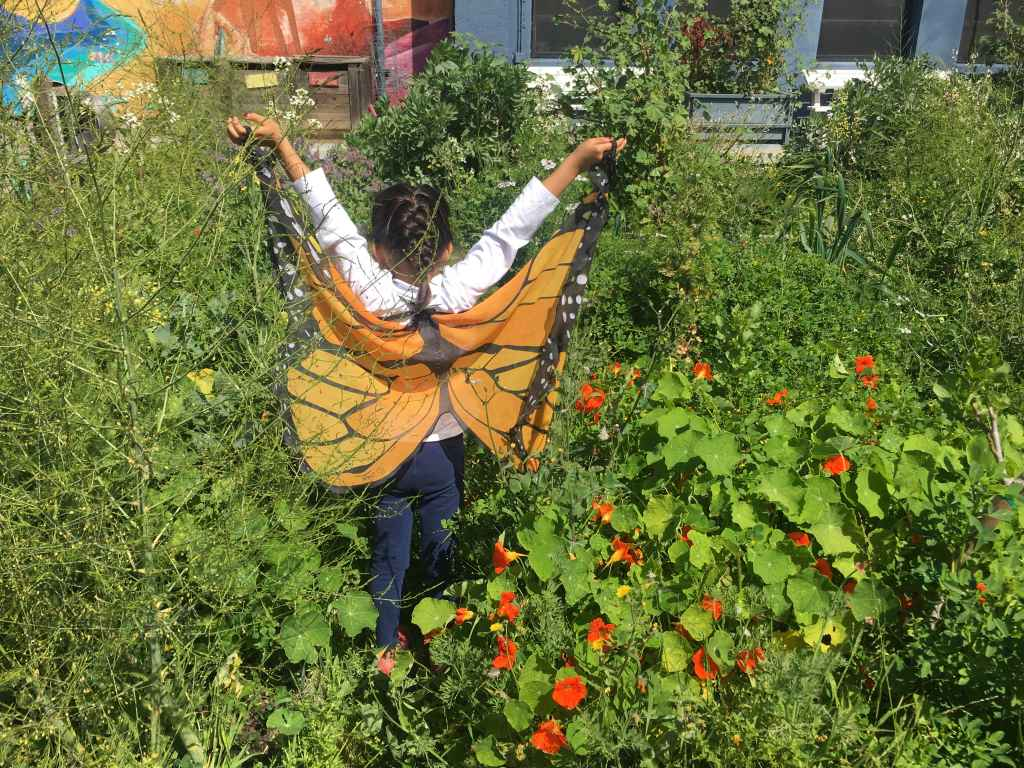 RP Student in Lower Garden with Butterfly Wings