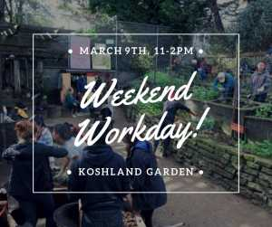 Spring Garden Workshop & Workday: Collecting and Propagating Cuttings